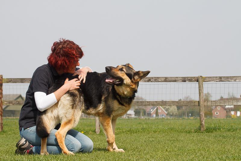 verschil moet er zijn, leven met twee honden